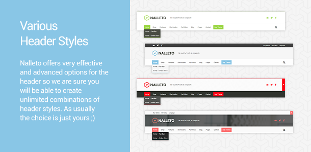 Header Styles. Nalleto offers very effective and advanced options for the header so we are sure you will be able to create unlimited combinations of header styles. As usually the choice is just yours ;)